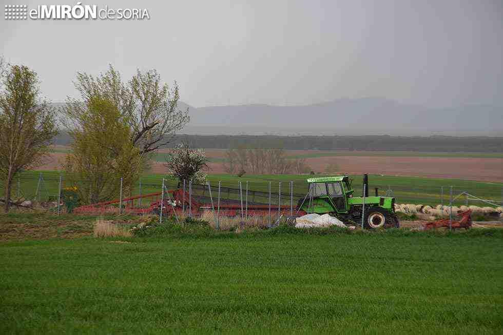 Detenido cazador furtivo en coto de Torrubia de Soria