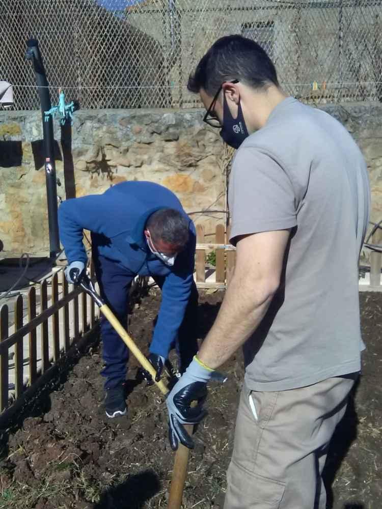 Asovica forma en labores de horticultura ecológica