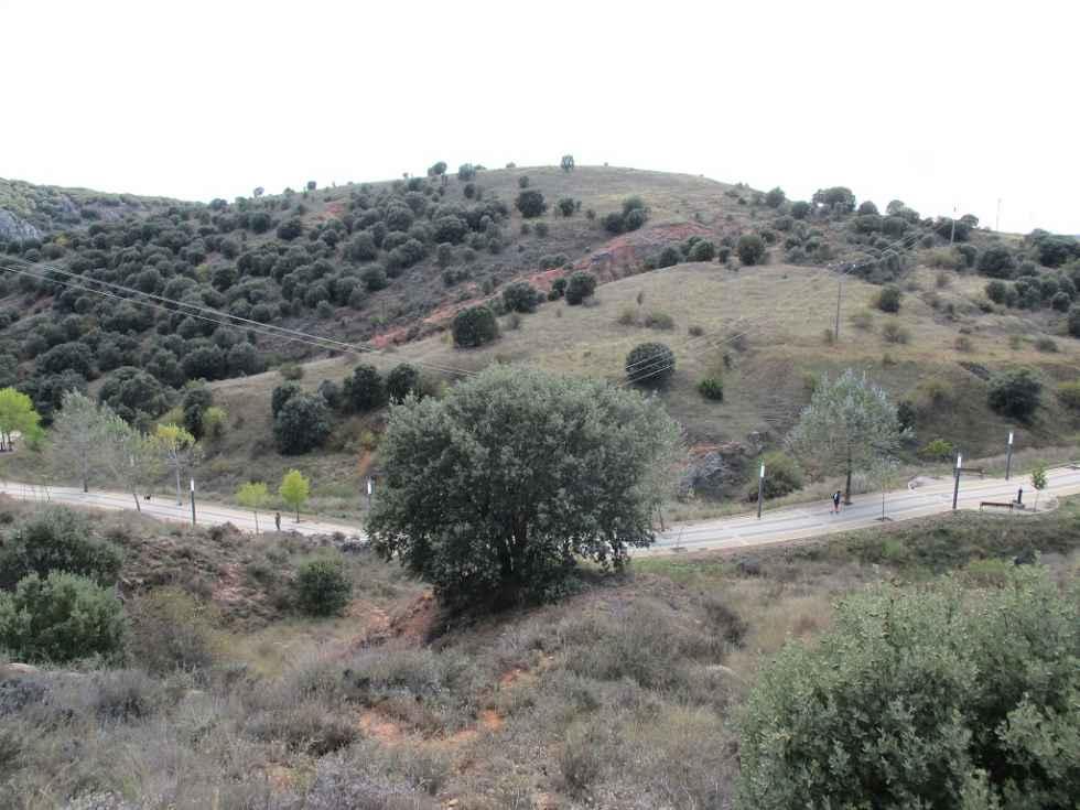 TRIBUNA/ El Cerro de los Moros frente a la Ley