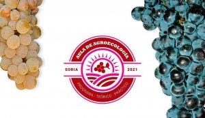 Jornadas sobre producción ecológica en viticultura