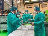 Equipos de protección Covid para 1.200 empresas
