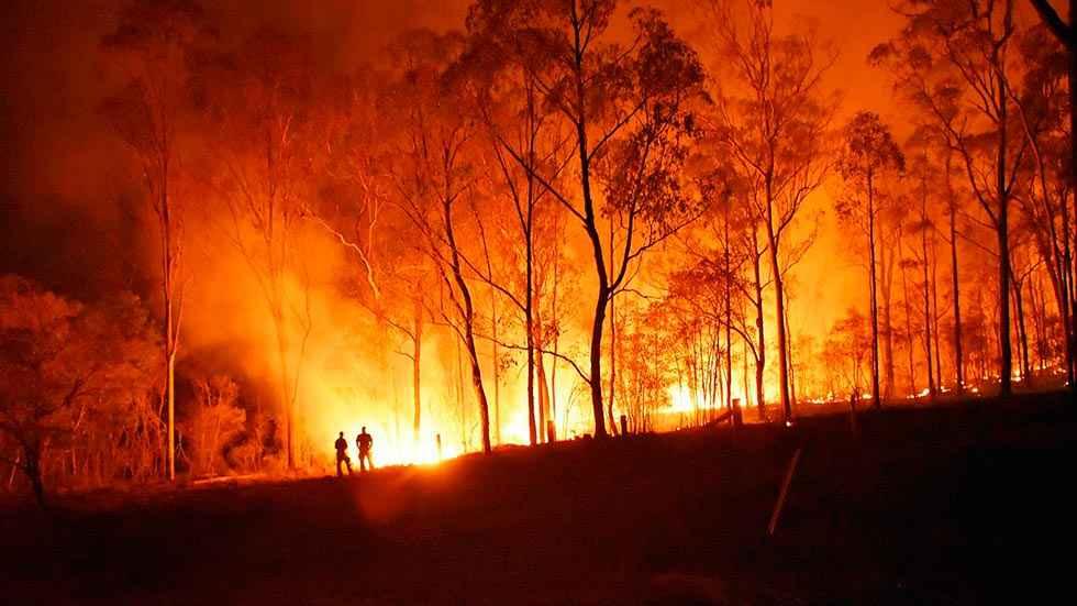 Casi 8 millones de hectáreas quemadas en España