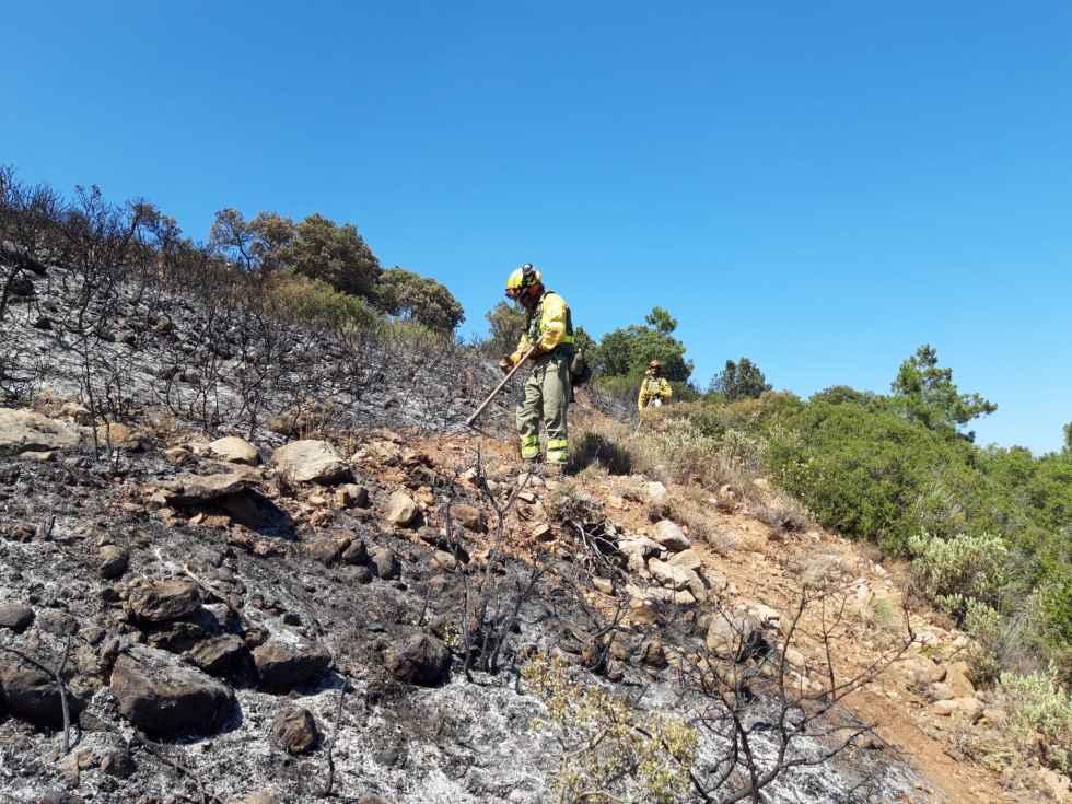 Declarada alerta de riesgo de incendios forestales