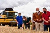 La Junta estima buena cosecha cerealista