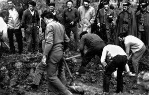 Medio siglo de primera exhumación