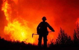 Nueva app con información sobre peligro de incendios