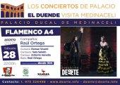 Espectáculo flamenco de Raúl Ortega A4