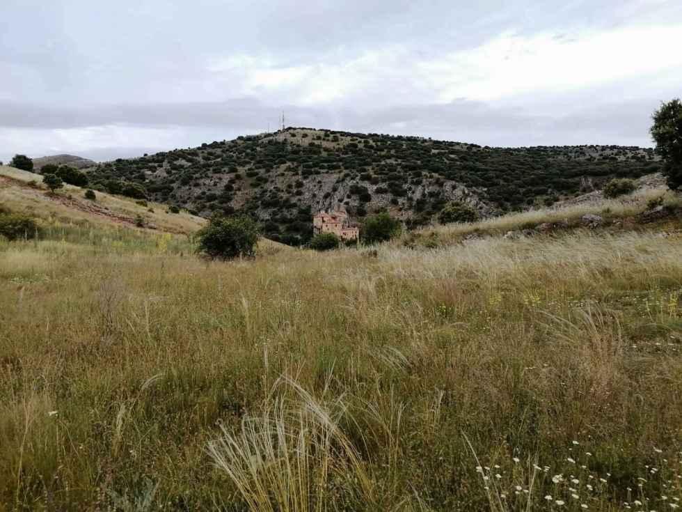 TRIBUNA / La reconquista del Cerro