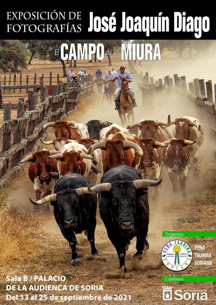 """""""El Campo de los Miura"""", en imágenes"""