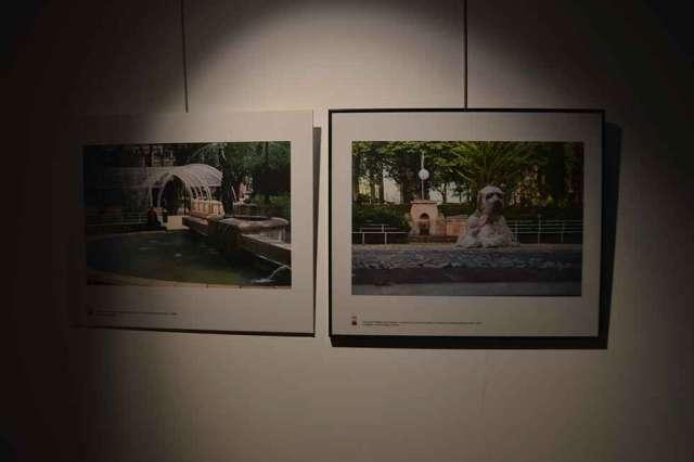 """Exposición """"Las edades del parque"""" - fotos"""