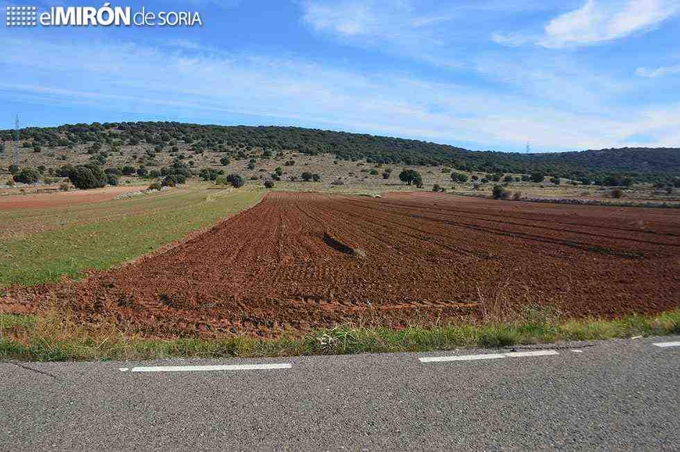 Manifestación para evitar nueva colonización de España vaciada