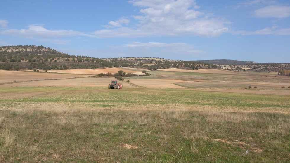 Preocupación creciente por subida de fertilizantes