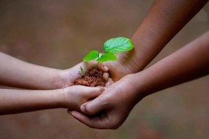 Un foro para difundir potencial de bioeconomía