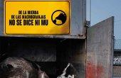 Hacendera se moviliza contra ganadería industrial