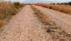 Solicita el arreglo de cuatro caminos rurales