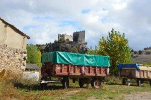 Visita a Castillejo de Robledo - fotos