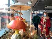 El mundo fungí se muestra en el mercado municipal